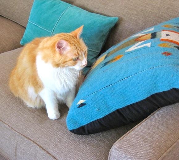 Mama's Sofa1