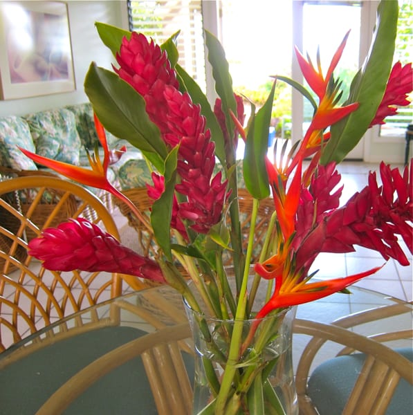 Sunshine Market Flowers